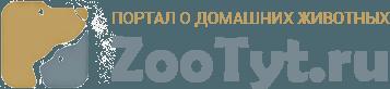 ZooTyt.ru