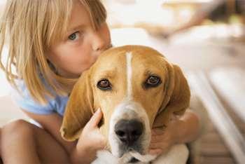 Девочка целует собаку