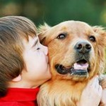 Мальчик целуют собаку