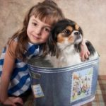 Девочка и небольшая собачка в ведре