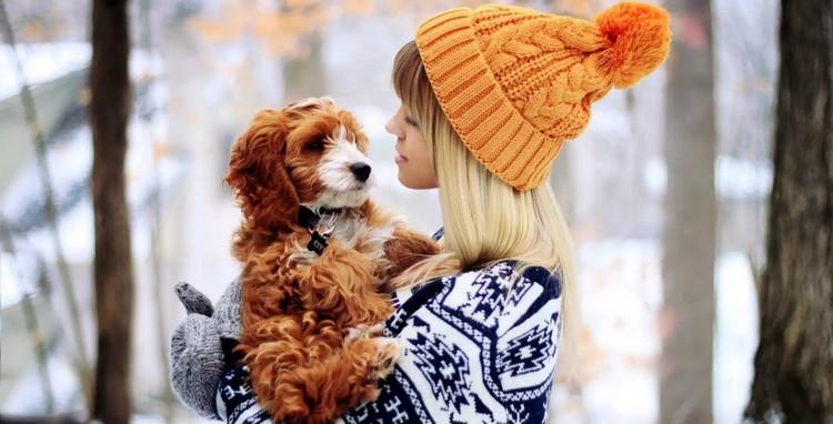 Девушка держит на руках собаку