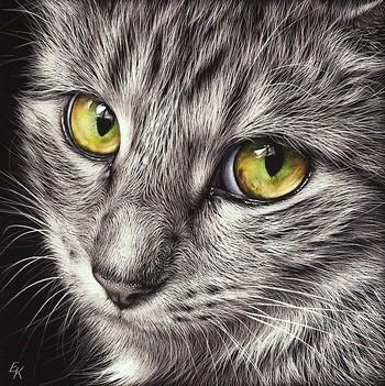 Красивая картина кота
