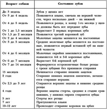 Состояние зубов в разный период возраста