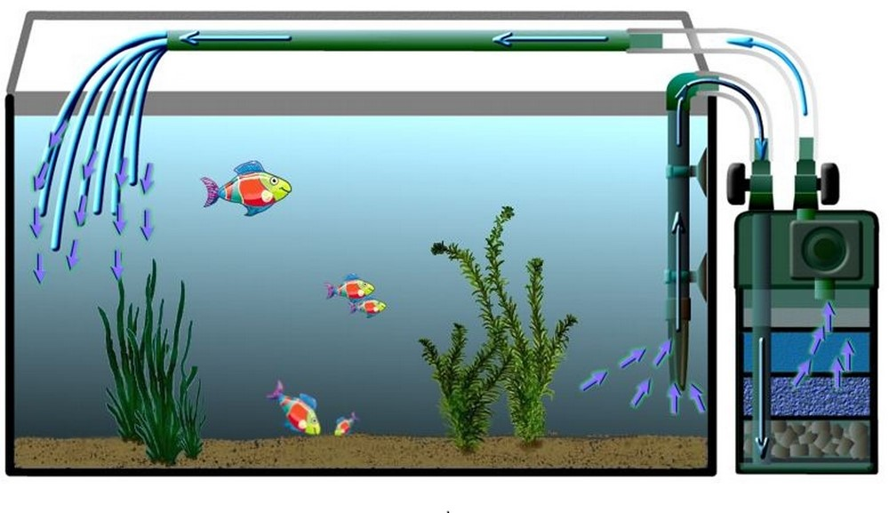 Фильтрация воды в аквариуме своими руками