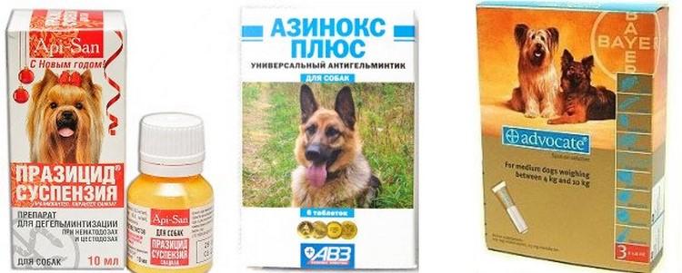 суспензия от глистов для собак фото