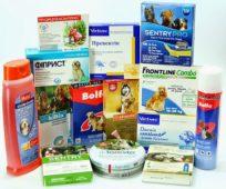 Разные средства от клещей для собак