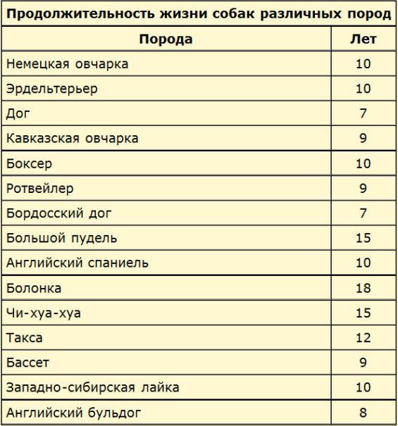 Средняя продолжительность жизни в домашних условиях