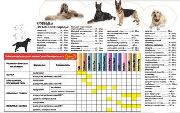 Вес и рост собак