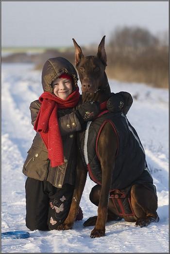 Доберман и ребенок