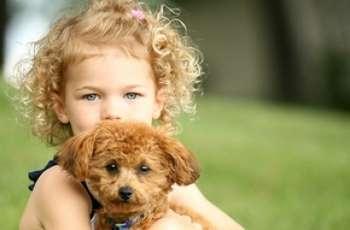 Девочка обнимается с маленькой собакой