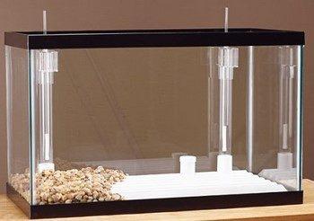 Обычный аквариум с донными фильтрами