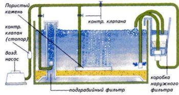 Как происходит фильтрация воды в аквариуме