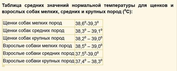 Таблица температур в зависимости от возраста и размеров собаки