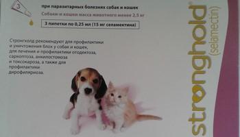Стронгхолд для собак от блох