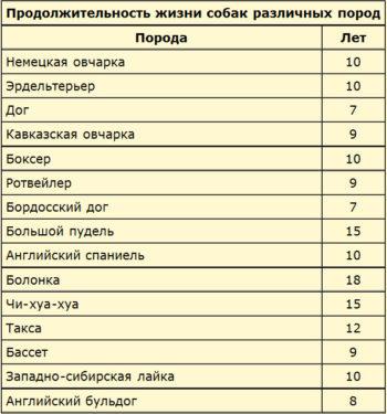 Таблица продолжительности жизни собак по породам