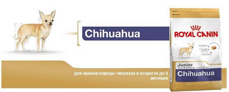 Корм роял канин для чихуахуа