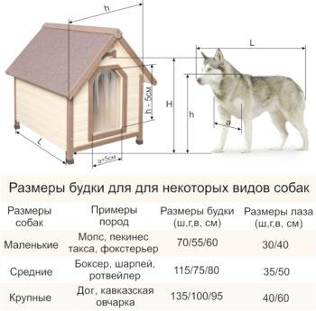 Размеры будок для разных пород