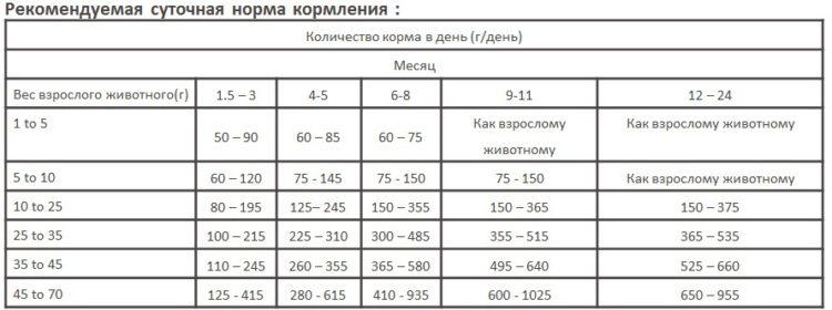 Таблица норм кормления для щенков